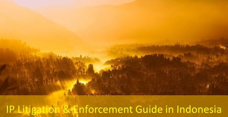 IP Litigation & Enforcement Guide in Indonesia, IP Litigation in Indonesia, Enforcement Guide in Indonesia, Indonesia IP Litigation, Indonesia Enforcement Guide